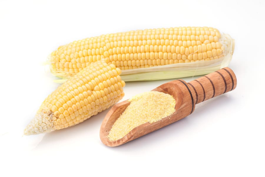 maize-corn-flour-isolated (1).jpeg